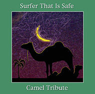 Surfer That Is Safe - Camel Tribute ... an album featured in Hallucinating
